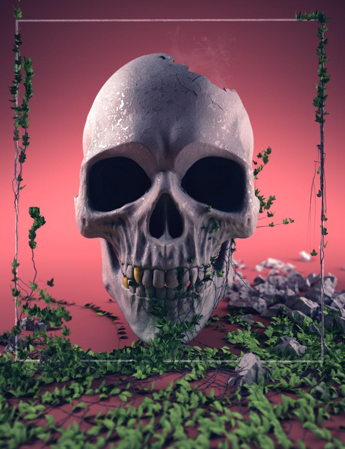 skull-web-01