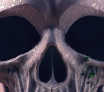 skull-web-03